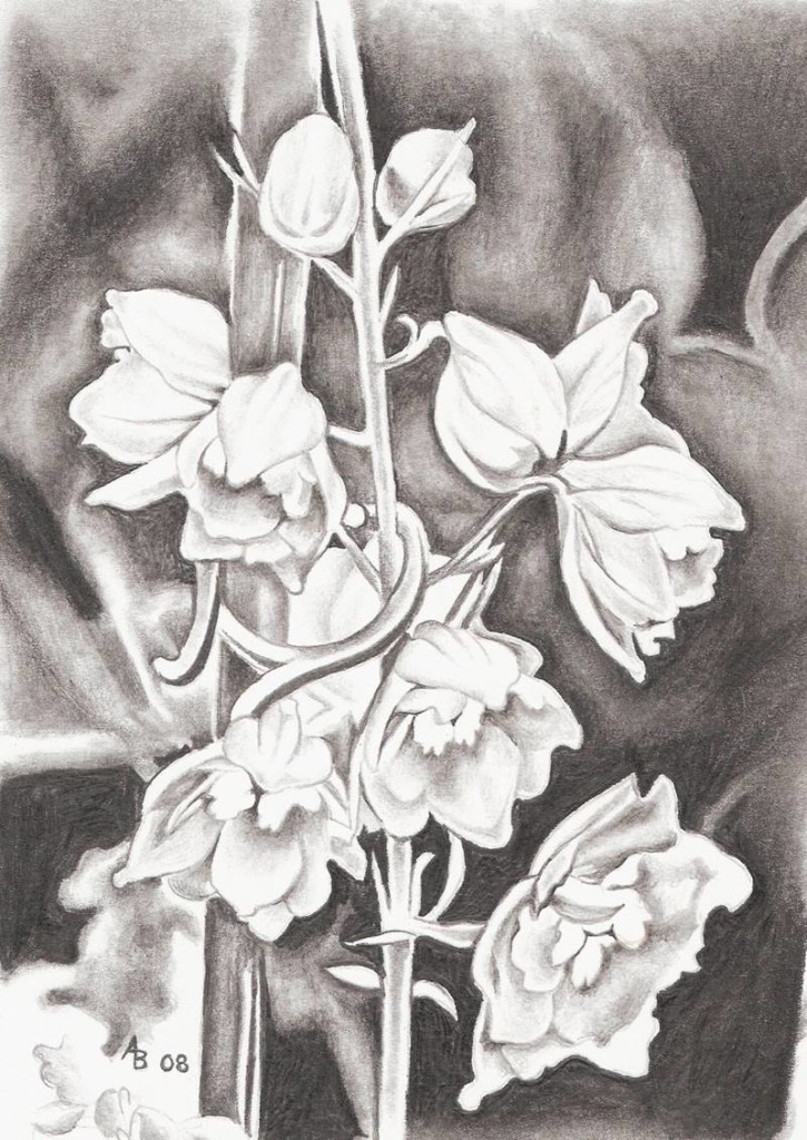 flowers-drawing-puzzles