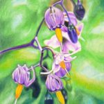 purple-flowers-colored-pencil-drawing